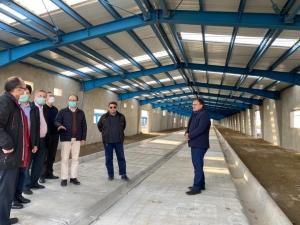 بازدید مدیرعامل هلدینگ کشاورزی و دامپروری و مدیران و کارکنان هلدینگ از پروژه بزرگ پرورش گوسفند در استان زنجان
